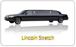 Los Angeles Party Bus Stretch Limo